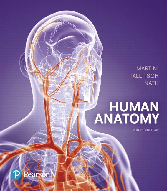 Solution Manual (Complete Download) for Human Anatomy, 9/E, Frederic H. Martini, Robert B. Tallitsch, Judi L. Nath, ISBN-10: 013432076X, ISBN-13: 9780134320762, ISBN-10: 0134296036, ISBN-13: 9780134296036, Instantly Downloadable Solution Manual, Complete (ALL CHAPTERS) Solution Manual