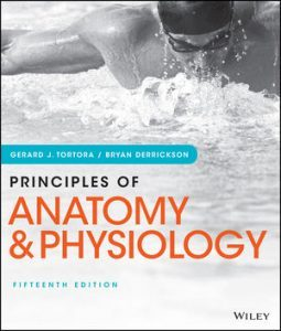 Test bank for Principles of Anatomy and Physiology 5th Edition by Tortora